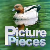 Play free online Picture Pieces